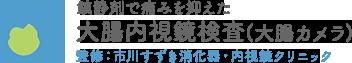 千葉県市川市市川駅徒歩1分の苦痛のない大腸カメラ(大腸内視鏡検査)|内視鏡専門医|駅近|日曜|女性医師
